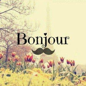 Bonjour Buen Día En Francés Imágenesdebuenosdiases