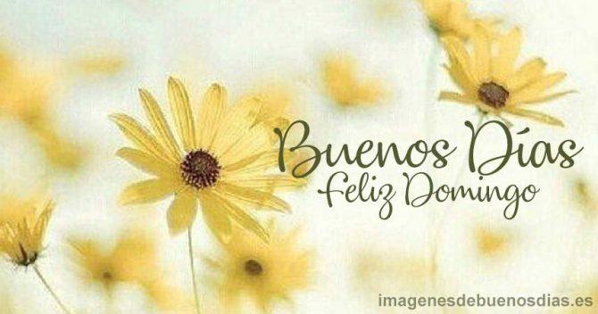 Buenos Días Domingo Imágenesdebuenosdiases
